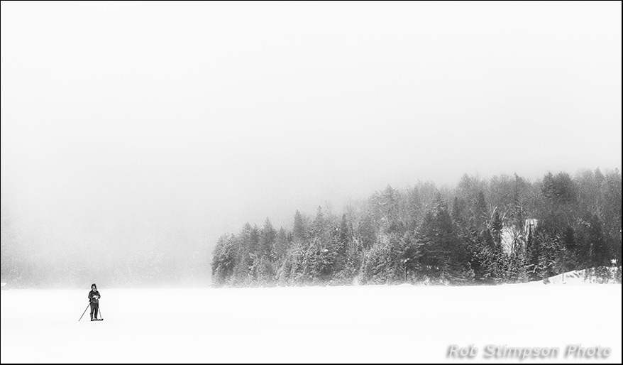 Lone skier on Canoe Lake, Algonquin Prov Park, Ontario