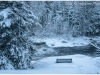 Black River - Winter in Muskoka Ontario