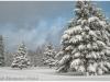 Winter in Muskoka Ontario