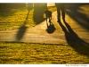 morning-shadows - Haliburton village, Ontario