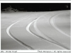 winter road; tire tracks; algonquin provincial park; ontario