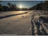 Algonquin Prov Park - minus 20, February