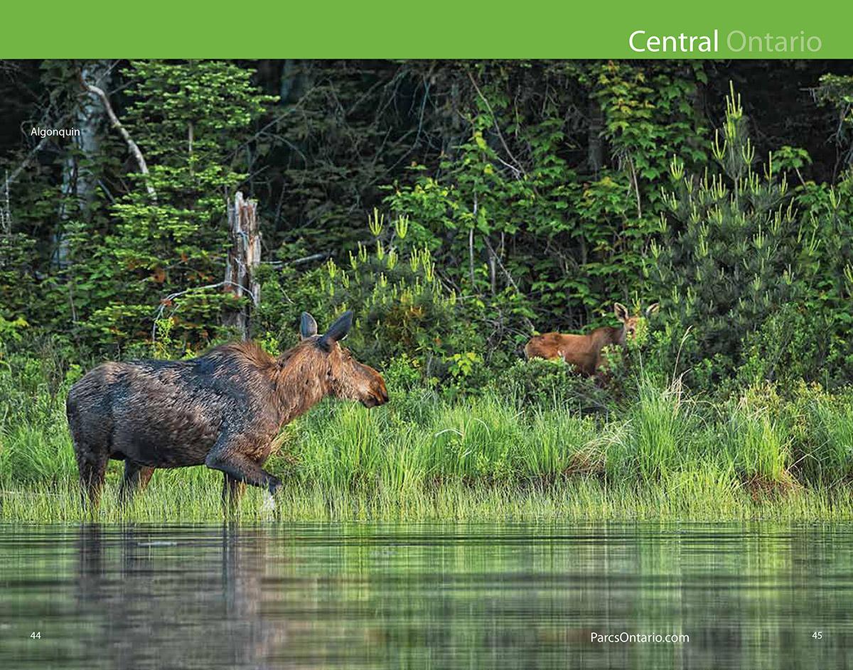 2015 Ontario Parks Guide inside