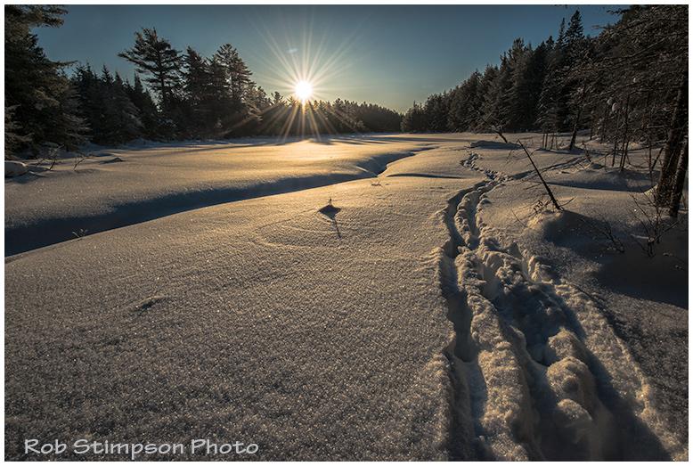 OP_Winter_0674
